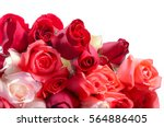 Stock photo bouquet of roses on white screen 564886405