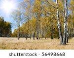 Beautiful Autumn Landscape On ...