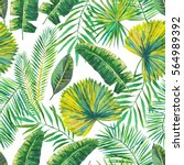 green palm leaves on the white... | Shutterstock . vector #564989392
