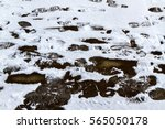 footprints on a slushy snow... | Shutterstock . vector #565050178
