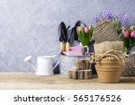 home and garden concept of...   Shutterstock . vector #565176526
