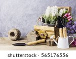 home and garden concept of... | Shutterstock . vector #565176556