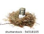 Financial Nest Egg Concept  10...