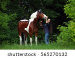 cowgirl and horse. casual sexy... | Shutterstock . vector #565270132