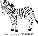 Vector   Zebra Standing...