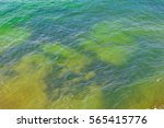 sea and underwater rocks. | Shutterstock . vector #565415776