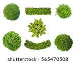 set of plants in top view... | Shutterstock . vector #565470508