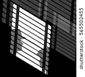 Venetian Blinds And Silhouettes