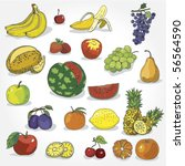 set of hand drawn colorful fruit   Shutterstock .eps vector #56564590