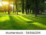 green lawn in city park under... | Shutterstock . vector #56566204