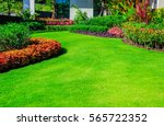 Green grass, The front lawn for background, Garden landscape design, Garden decoration for the background.