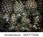 pineapples | Shutterstock . vector #565777606