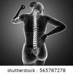 3d illustration of women...   Shutterstock . vector #565787278