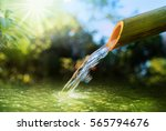 forest is water concept. water... | Shutterstock . vector #565794676