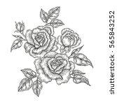 hand drawn flowers. vintage... | Shutterstock . vector #565843252