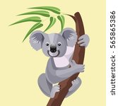 Grey Koala Bear Isolated On...