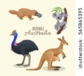 Australian Animals Collection...