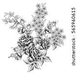 rose  motif | Shutterstock .eps vector #565960615
