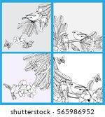 set background frangipani and... | Shutterstock .eps vector #565986952