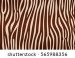 stripe animals jungle texture... | Shutterstock .eps vector #565988356