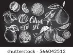 ink hand drawn set of different ... | Shutterstock .eps vector #566042512