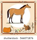 horse and riding tack tools in... | Shutterstock .eps vector #566071876