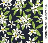 floral spring seamless pattern... | Shutterstock .eps vector #566096716