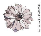 Light Gray Vector Flower For...
