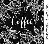 organic coffee leaf  bean... | Shutterstock .eps vector #566253706