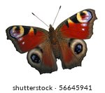 Stock photo european peacock butterfly isolated on white 56645941