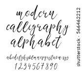 handwritten calligraphy elegant ... | Shutterstock .eps vector #566462212