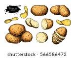 potato drawing set. vector... | Shutterstock .eps vector #566586472