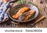 grilled salmon fillets and herb ... | Shutterstock . vector #566638006