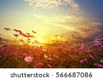Landscape Nature Background Of...