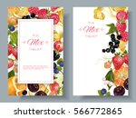 vector fruit and berry vertical ... | Shutterstock .eps vector #566772865