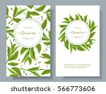 vector green tea banners with... | Shutterstock .eps vector #566773606