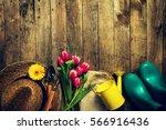 gardening tools  flowers ... | Shutterstock . vector #566916436