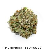 close up photo of a cannabis... | Shutterstock . vector #566933836