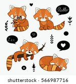 Cute  Hand Drawn  Red Panda....