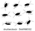 roaches vector silhouette... | Shutterstock .eps vector #566988532