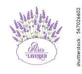wreath of lavender flowers in... | Shutterstock .eps vector #567026602