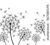 beautiful white nature... | Shutterstock .eps vector #567085195