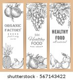 sketched fruit banners.... | Shutterstock .eps vector #567143422