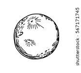 vector illustration hand drawn... | Shutterstock .eps vector #567171745