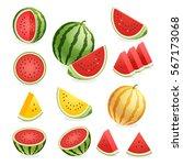 watermelon. vector illustration. | Shutterstock .eps vector #567173068
