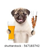 puppy with beer and grilled...   Shutterstock . vector #567183742