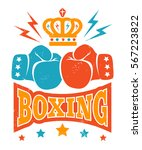 vector vintage logo for boxing... | Shutterstock .eps vector #567223822