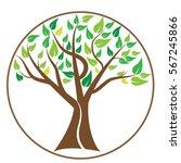 tree vector. for tree logo... | Shutterstock .eps vector #567245866