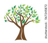 tree vector. for tree logo... | Shutterstock .eps vector #567245872