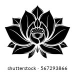 Flower Lotus  Black And White....